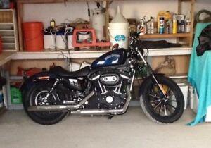 Harley Davidson Iron 883 à vendre