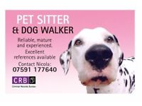 Reliable,Trustworthy,Experienced,Mature pet sitter/dog walker