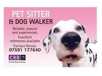 Pet/House sitter/dog walker