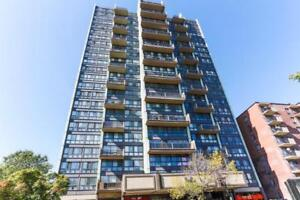 3 1/2 Apartment Lease Transfer Available
