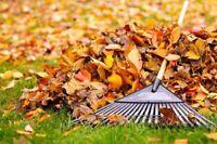 Raking Leaves for Fall/Ratissage des Feuilles pour Automne