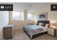Brand new 1-bed apartment available to rent