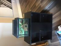 5 Gallon Fish Tank and Stand