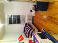 Subletting downtown studio near McGill for July and August $450