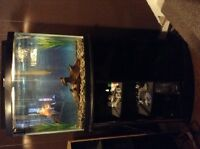 30gal bow front fish tank with stand