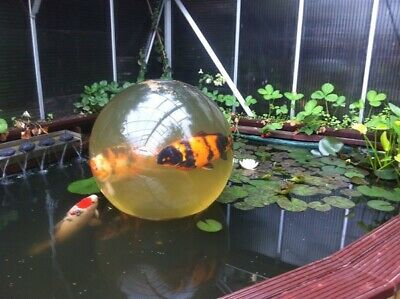 fish pond,dome,koi,sphere,garden features, health checker,filters