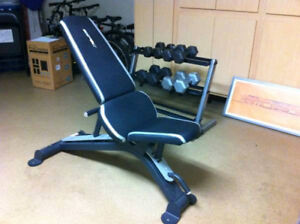MOVING SALE (40% off retail) - Epic Brand Adjustable FID Bench
