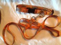 ASSORTED DOG LEASHES & COLLARS