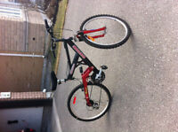mountain bike brand new never bike excellent condition