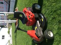 "Troy Bilt 30"" cut"