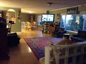 Large and bright rewly renovated house (30 mins to downtown)