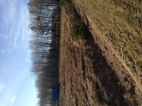 Lot centrally located between S'side & Ch'town 2616 Maplewood Rd