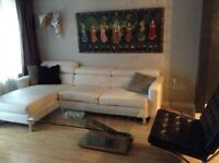Freshly painted and furnished room for rent in great 6 1/2!!