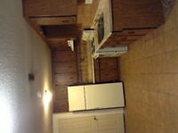 Specious 2 Bedrooms walk-out basement for Rent in Multon