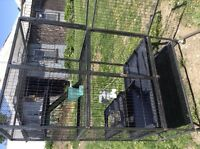 Ferret a Nation multi level cage for sale.