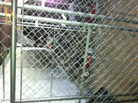 FOR SALE:  Two 5'W x 6'H Chain-link panels