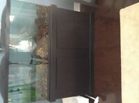 55 gallon fish tank with fish for sale