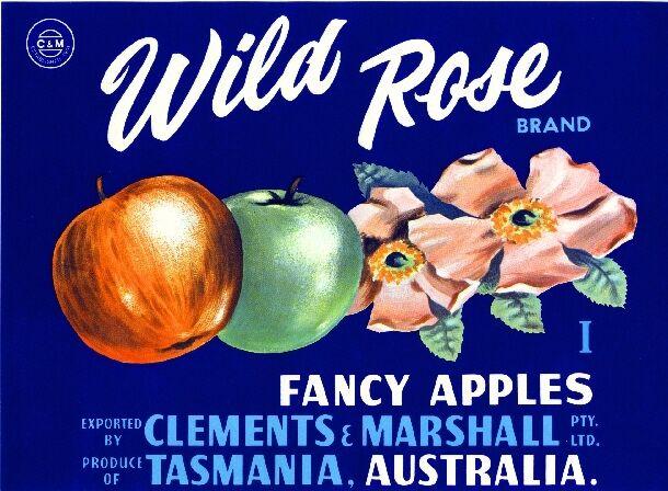 Tasmania Australia Wild Rose Flowers Apple Fruit Crate Label Art Print