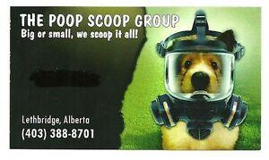 THE POOP SCOOP GROUP