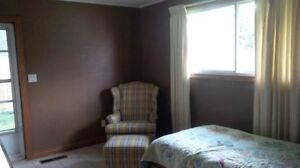 Room with private entrance - New Dundee Kitchener / Waterloo Kitchener Area image 1