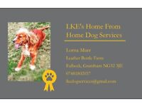Dog boarding & walking Services
