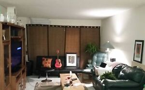4 Gorgeous 7x4 ' bamboo blinds Mint Condition $250 now $150