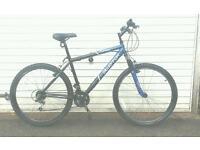 Silverfox lightweight bike