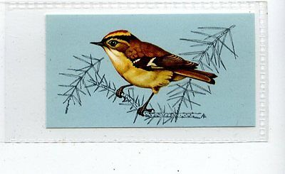 (Jd4229) TETLEY,BRITISH BIRDS,GOLDCREST,1970,#30