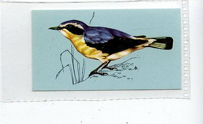 (Jd4185) TETLEY,BRITISH BIRDS,WHEATEAR,1970,#8