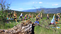 Hike n Yoga by The Amplified Collective
