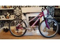 ladies lilac/silver reebok mountain bike