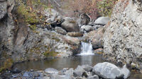 Placer claim on Blakeburn Creek in the Tulameen