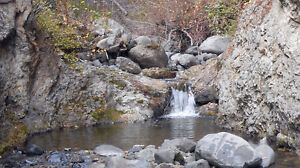 Placer gold claim on Blackburn Creek (Tulameen)