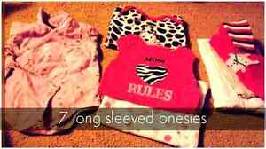0-3, plus 3 month baby girl clothing lot