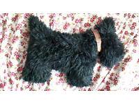 Vintage Black Scottie Dog Cushion