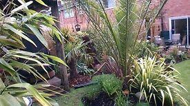 Garden Maintenance Round