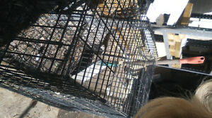 Steel foldable dog kennel and fence