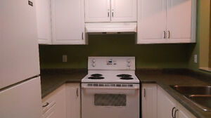 2-Bedroom, 2-Bath condo for rent STARTING MAY 15TH