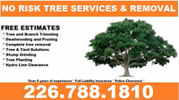 TREE REMOVAL AND TRIMMING ****CALL FOR A FREE QUOTE TODAY****