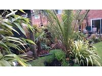 Garden Maintenance Round for sale