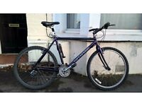 Cannondale M300 mountain bike