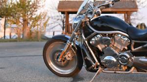 2005 Harley Davidson V-rod (VRSC)
