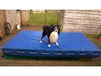 Crash / Exercise/ Stunt mats for the kids - or big kids!