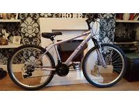 ladies light/lilac apollo mountain bike