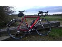 Various Road Racing bikes for sale from £125