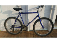 adult claude butler mountain bike