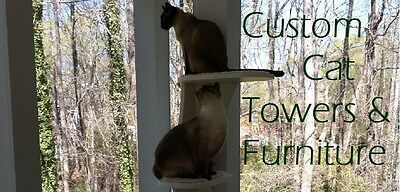 Custom Cat Towers and Furniture