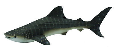 WHALE SHARK - 24cm Sealife Model by CollectA 88453 *New with Tag*
