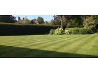 Gardening Weybridge/Walton/Woking/Guildford/Cobham//Haslemere/Surrey
