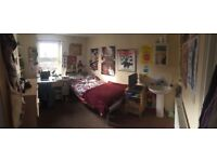 Single Student Bedroom (Mill Road)